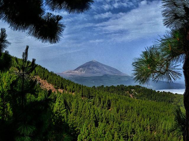 Iva en Canarias